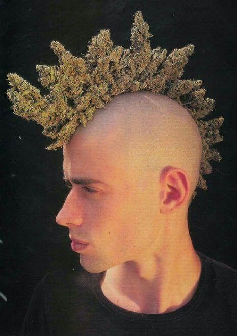 Weed punk