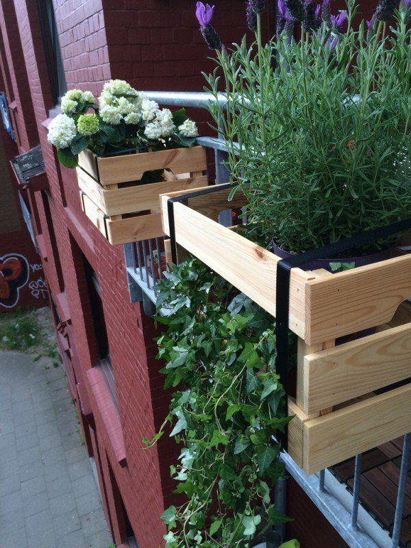 las 25 mejores ideas sobre ikea pflanzen en pinterest. Black Bedroom Furniture Sets. Home Design Ideas