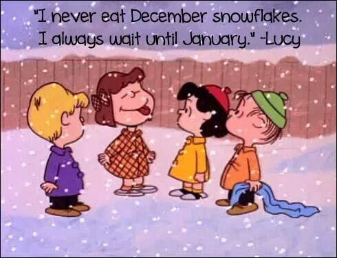 Image result for january peanuts