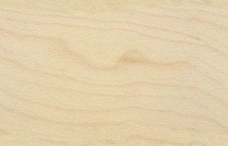 59+ Ideas birch wood texture seamless for 2019 #woodtextureseamless