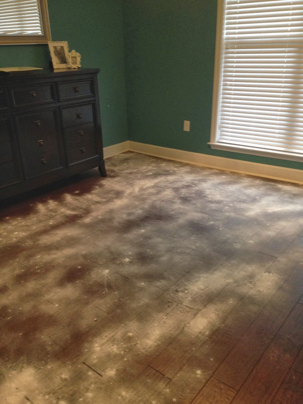Removing Pet Stains from Hardwood Floors Clean hardwood