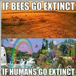 If Bees Go Extinct If Humans Go Extinct Vegan Meme Vegan