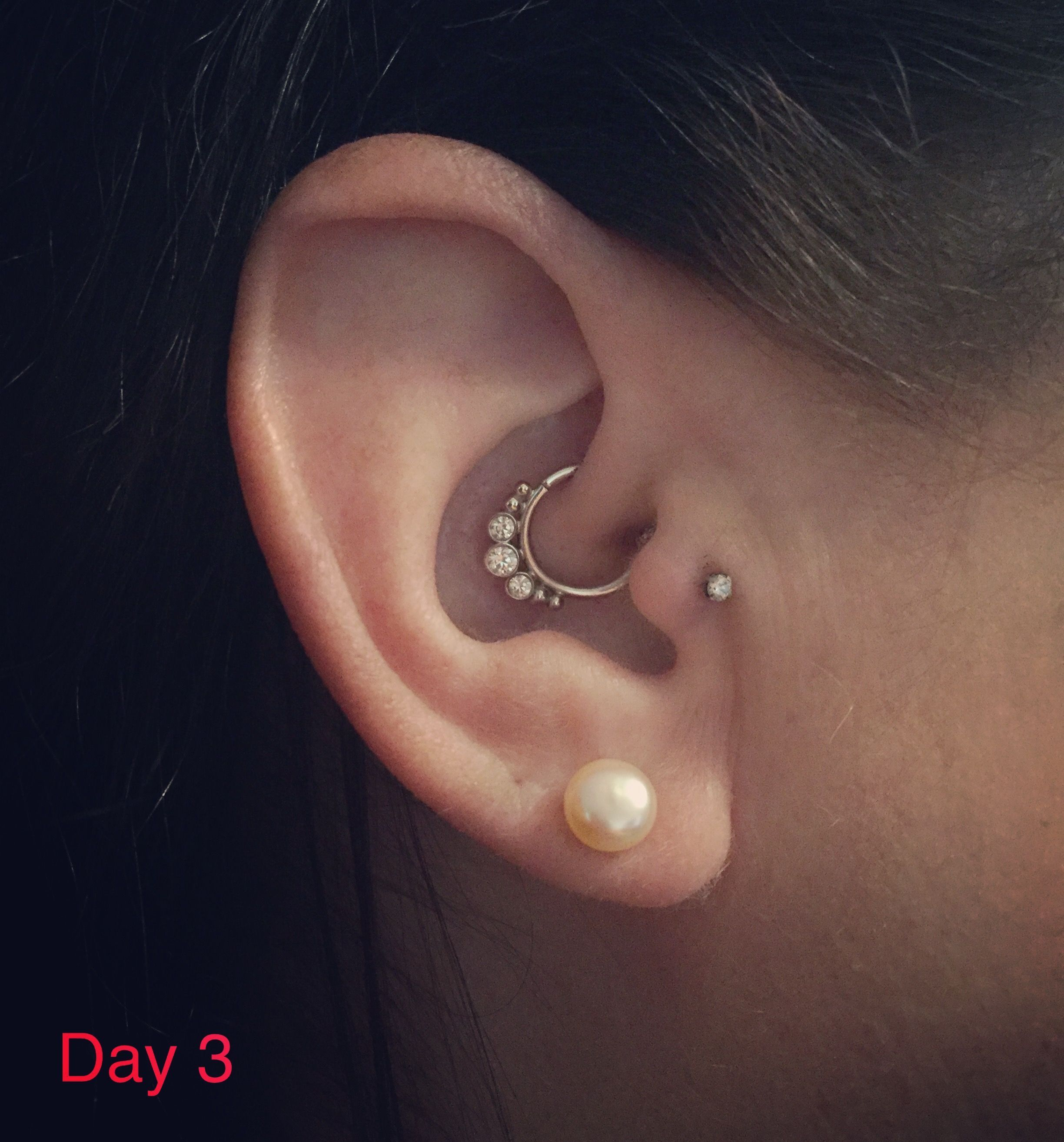 Day  after tragus and daith piercing very little swelling and no