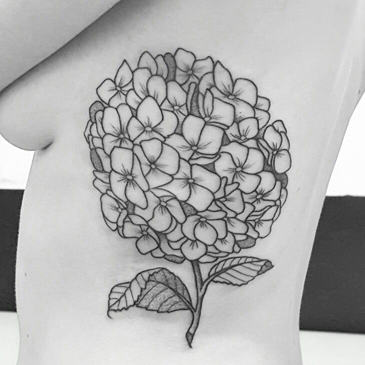 Black Hydrangea Floral Rib Tattoo Illustration Hydrangea Tattoo Tattoos Sleeve Tattoos