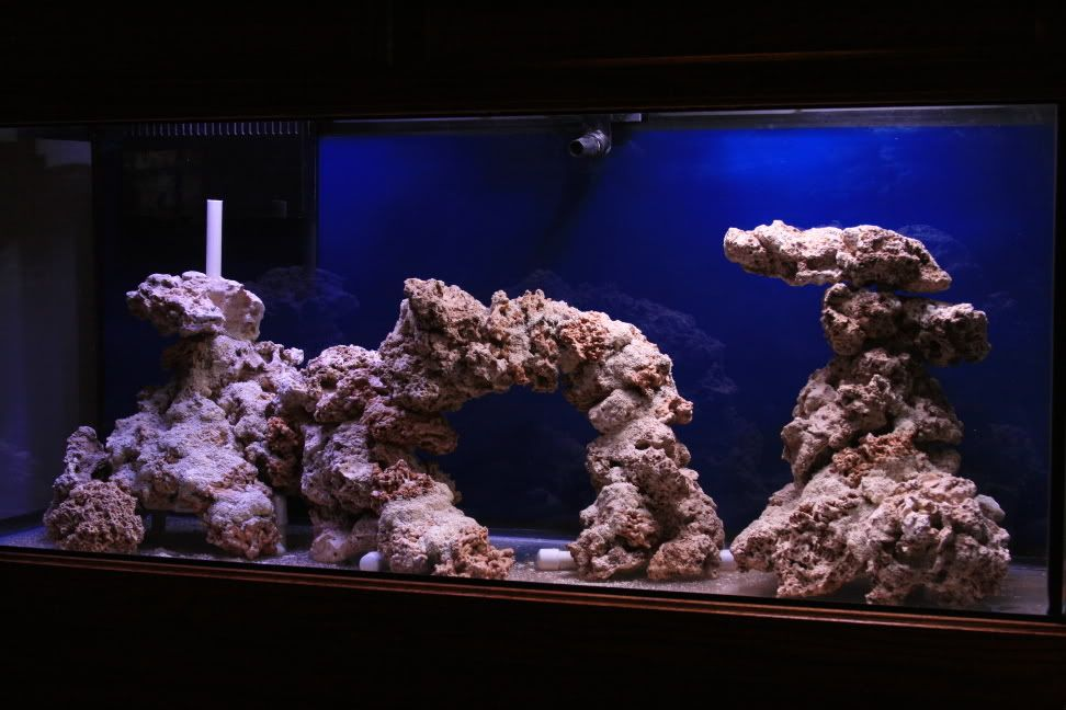 Aquascaping, Show your Skills... - Page 2 - Reef Central ...