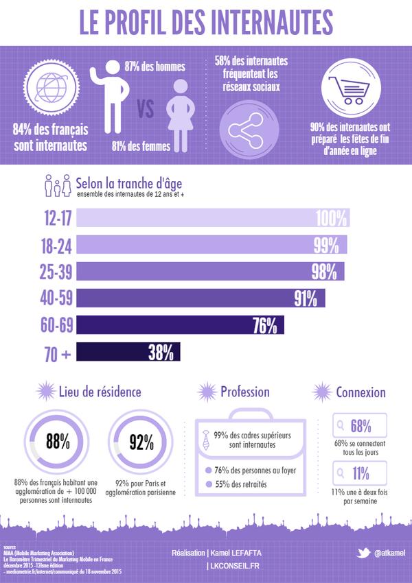 quel est le profil des internautes français en 2016
