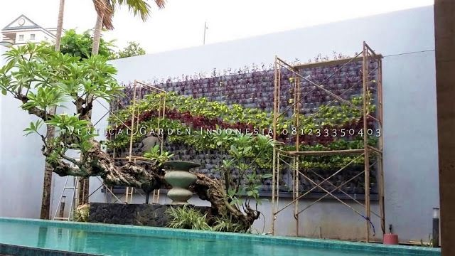 Jasa Pembuatan Taman Vertical (Vertical Garden) Di Jakarta ...
