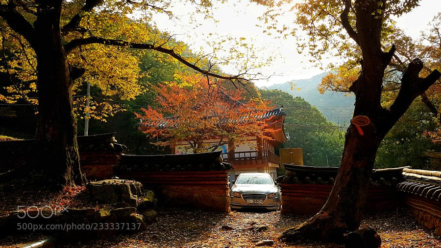 Autumn scenery of Yong Yeon temple by love365lsc #landscape #travel