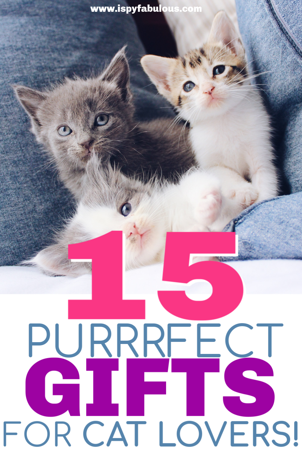 15 Purrfect Gifts For The Cat Lover On Amazon I Spy Fabulous In 2020 Cat Lovers Cat Love Quotes Cats