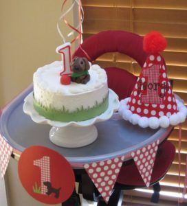 Puppy theme 'smash cake' with party hat and high chair banner