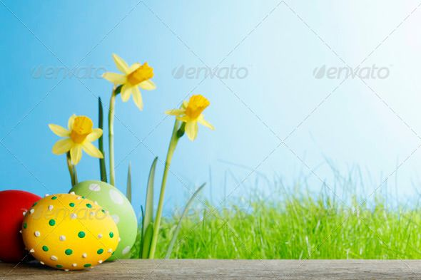 Easter eggs and flowers ...  background, blue, celebration, color, colorful, copy space, daffodil, decorated, decoration, easter, egg, field, flower, fresh, grass, green, lawn, meadow, narcissus, nature, painted, sky, spring, yellow