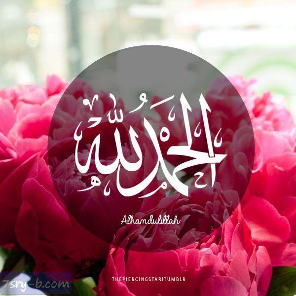 صور الحمد لله صور مكتوب عليها الحمد لله خلفيات ورمزيات الحمد لله جميلة وجديدة Alhamdulillah Pink Flowers Islam