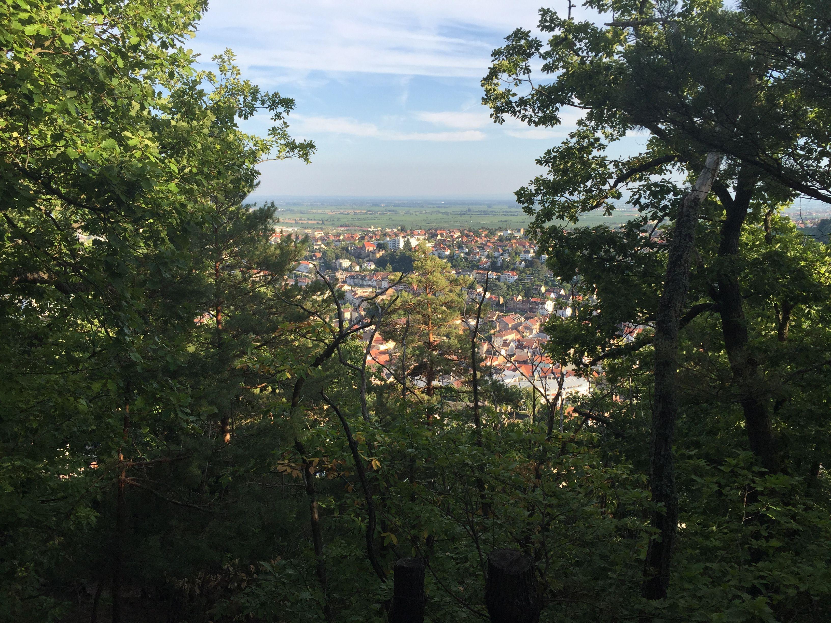 Pin Von Clubmed Ab Auf Neustadt An Der Weinstrasse Kleinstadt Strasse Deutschland