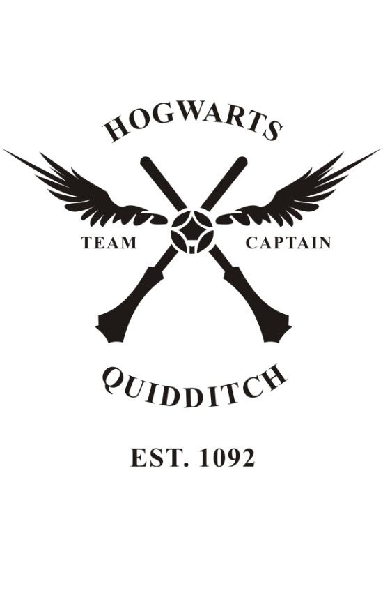 Hogwarts Quidditch Tshirt Harry Potter T Shirt Top Tee