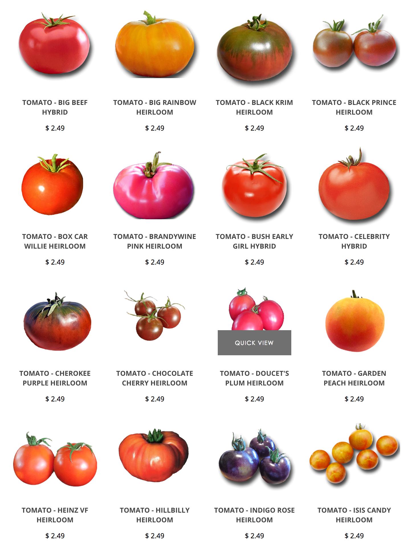 Heirloom Tomatoes Seeds Brandywine Cherokee Purple