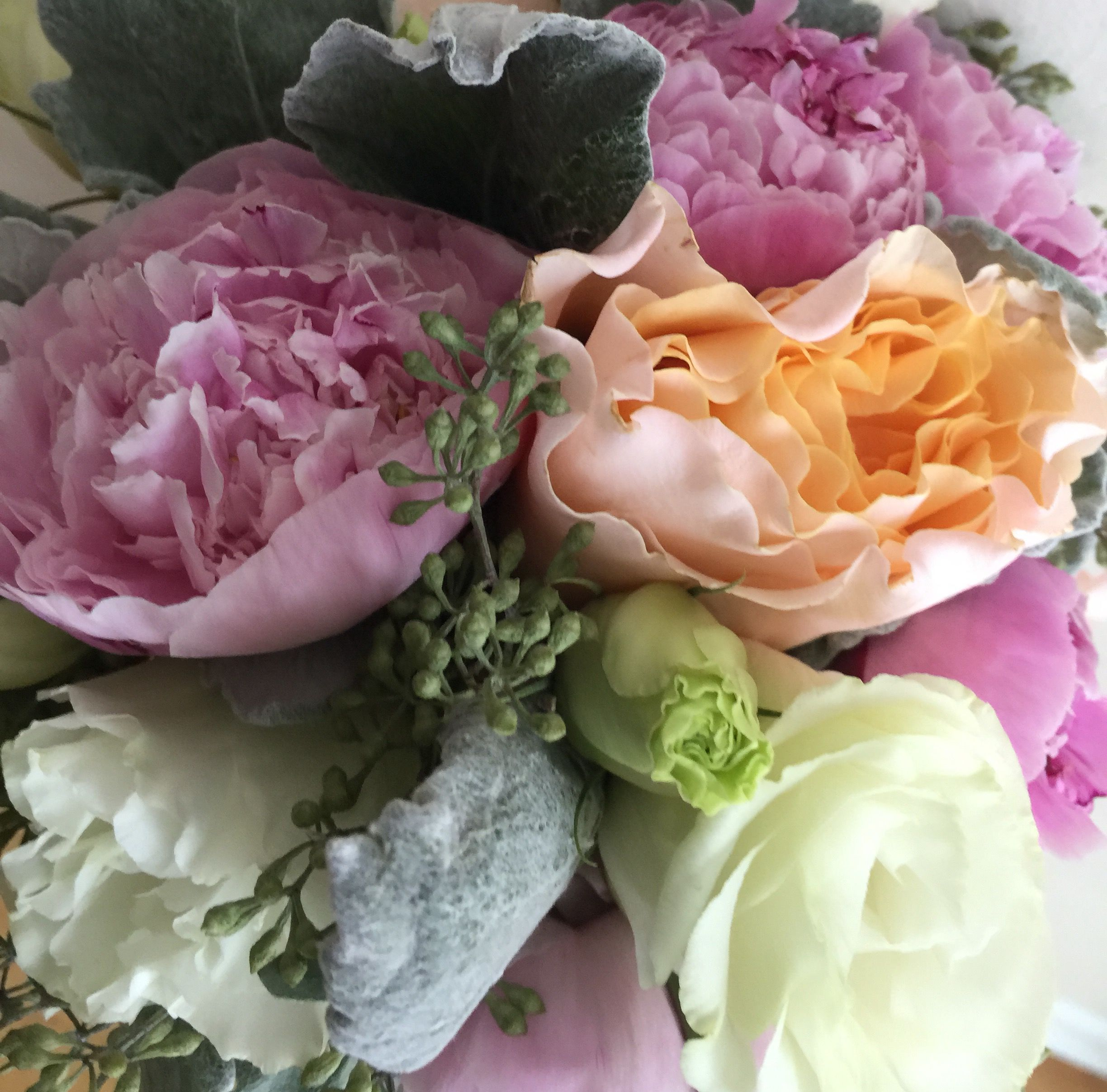 Garden Rose And Peony pink peony garden roses dusty miller | wedding flowerskathy