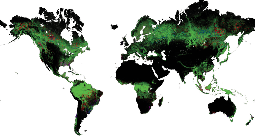 For SGI Ecology Unit: FOREST MAP  A new tool layers satellite images onto a Google map to show changes in forest cover. ~~ M. Hansen et al/Science 2013