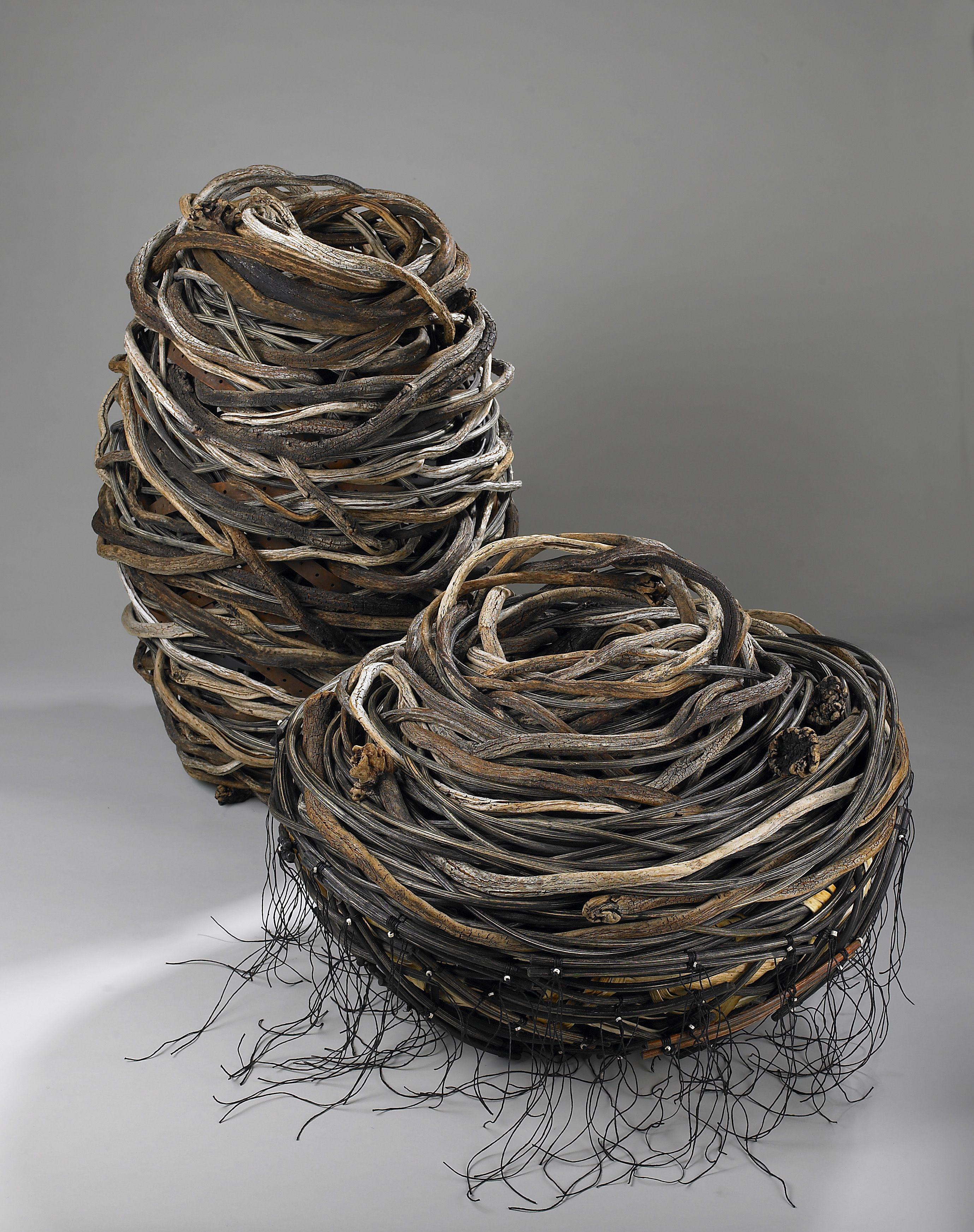 CARRY YOUR WEIGHT  WHIRLPOOL ARTIST: Shannon Weber, Oregon * Palm Tree kelp, bull kelp,