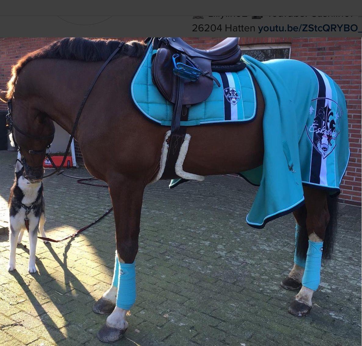idee cadeau femme equitation