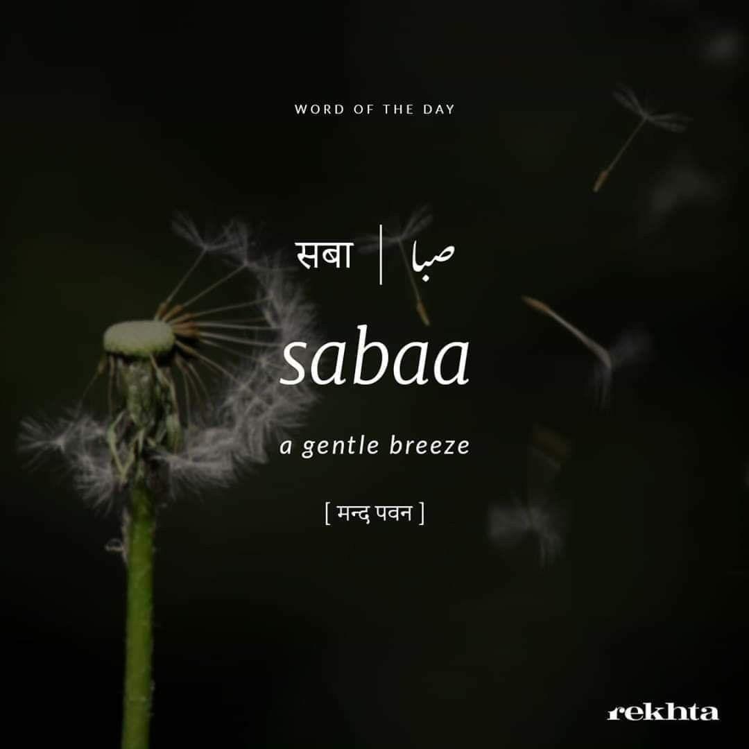 Pin By Anjali Singh On Urdu Words In 2020 Urdu Words With Meaning Hindi Words Urdu Love Words