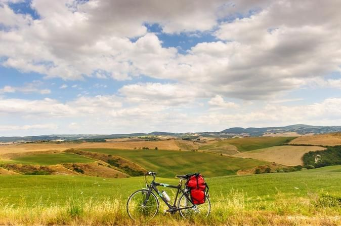 Tuscan Country Bike Tour From Florence Including Wine And Olive