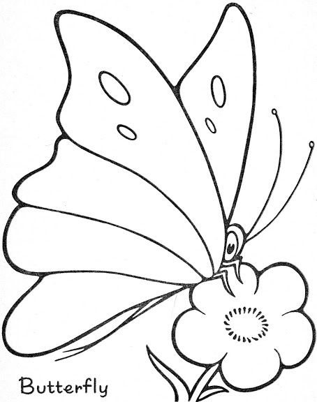 Coloring Book 1260 Trace And Color Butterfly Drawing Stained Glass Butterfly Fabric Painting