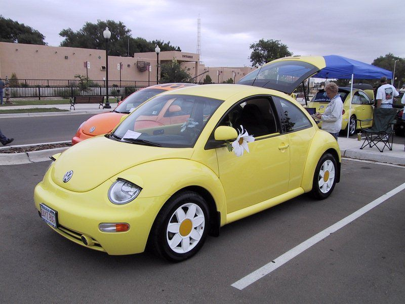 Cute Vw Beetles Yahoo Image Search Results