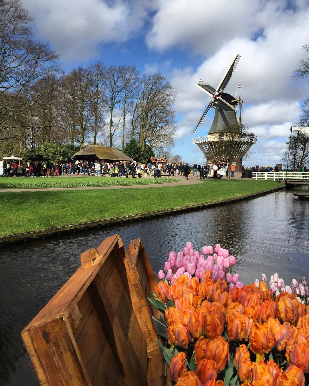 Keukenhof Flower Garden!) #nice #cool #beauty #sky #nature #