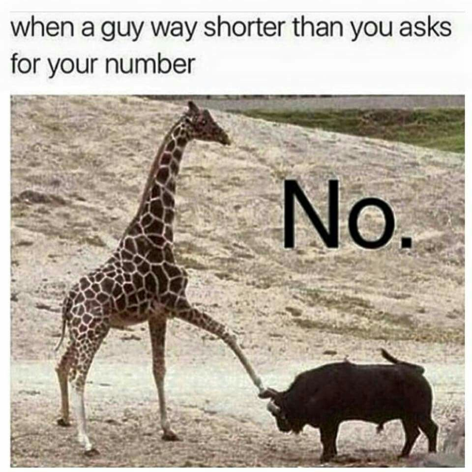 That's wouldn't be the case for me😂 I'm shorter than most guys.