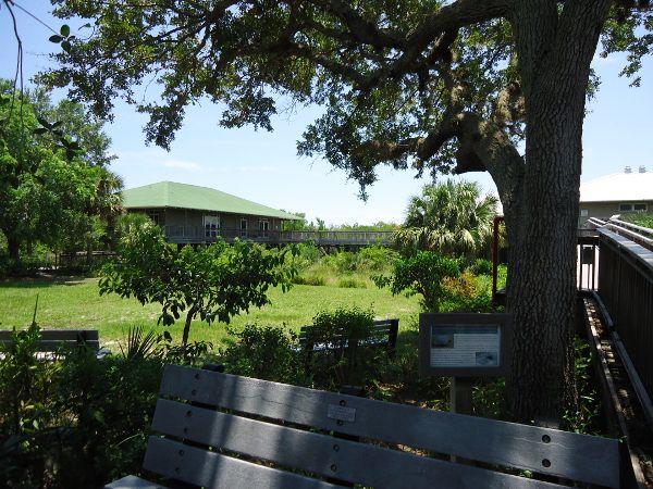 Environmental Learning Center Vero Beach Stuart Fl