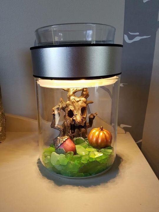 scentsy terrarium warmer scentsy warmers candle. Black Bedroom Furniture Sets. Home Design Ideas