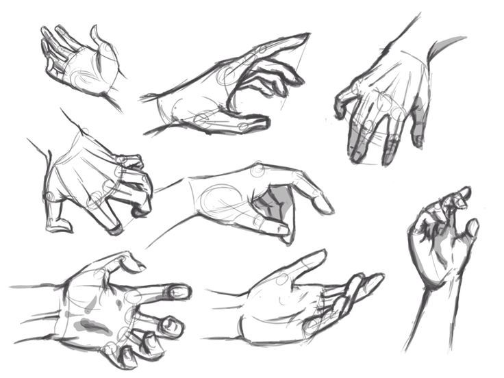 How to Draw Hands, Step by Step, Hands, People, FREE Online ...