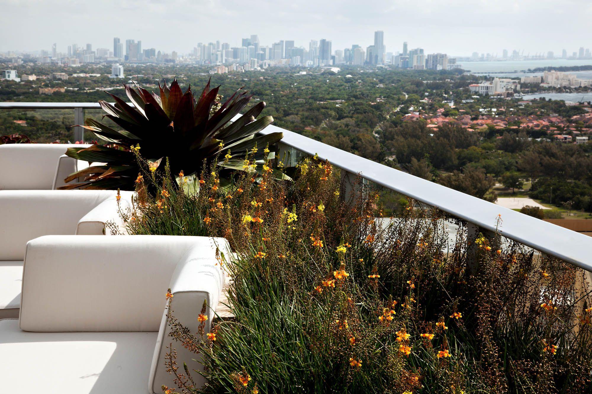 06-Steven Brooke Photography-Grovenor Rooftop Garden | Landscape ...