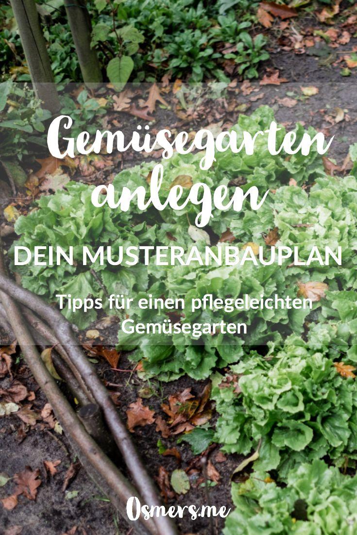 Anbauplan und Gartenkalender für das Gemüsebeet auf 16qm ...