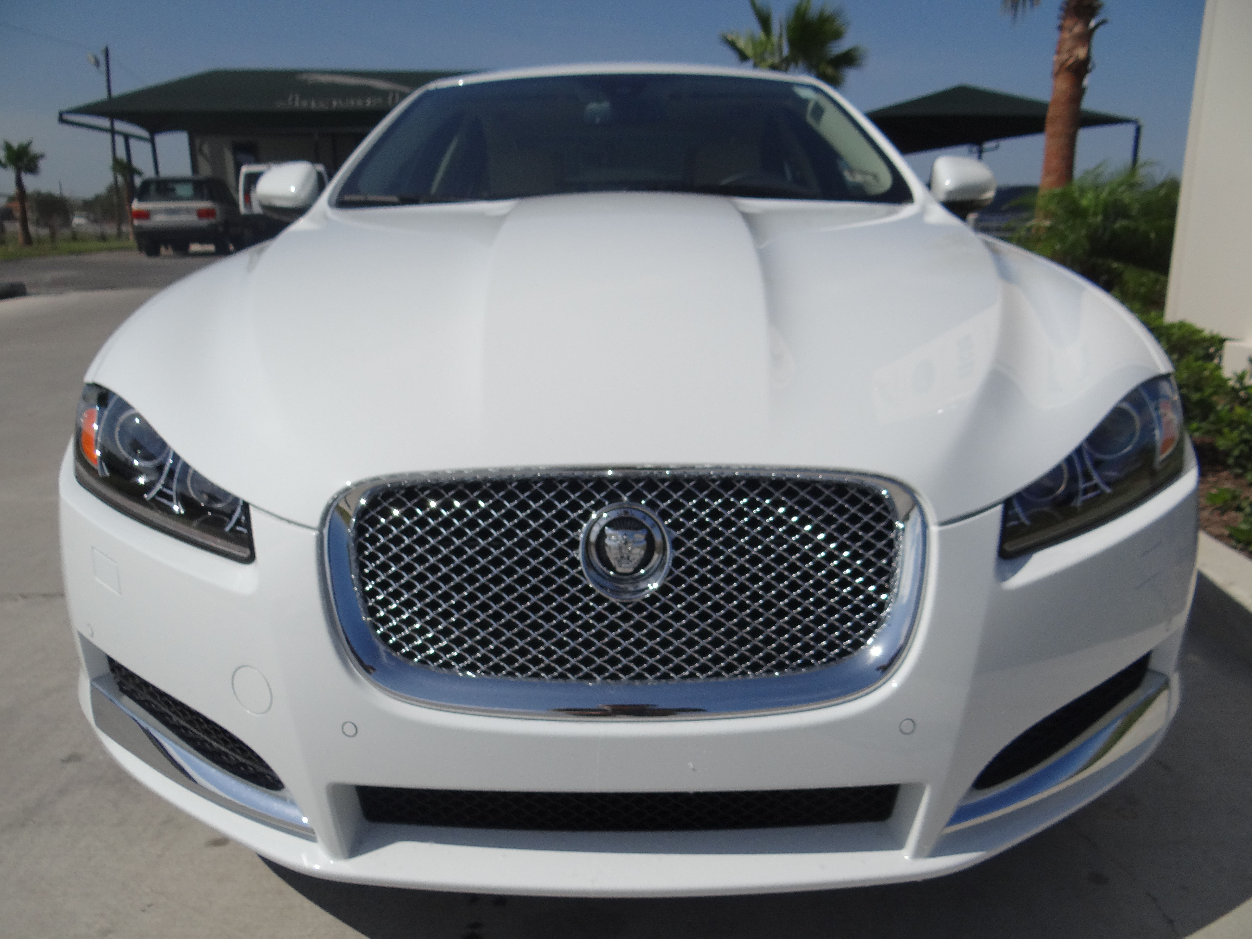 front of a new 2013 jaguar xf at jaguar san juan texas www