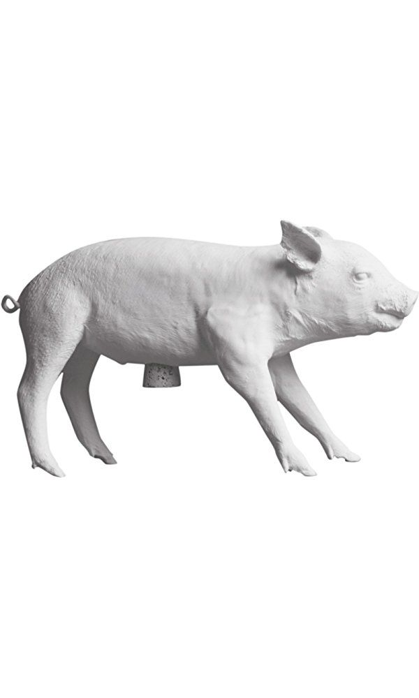 Areaware Bank in The Form of a Pig, Matte White Best Price