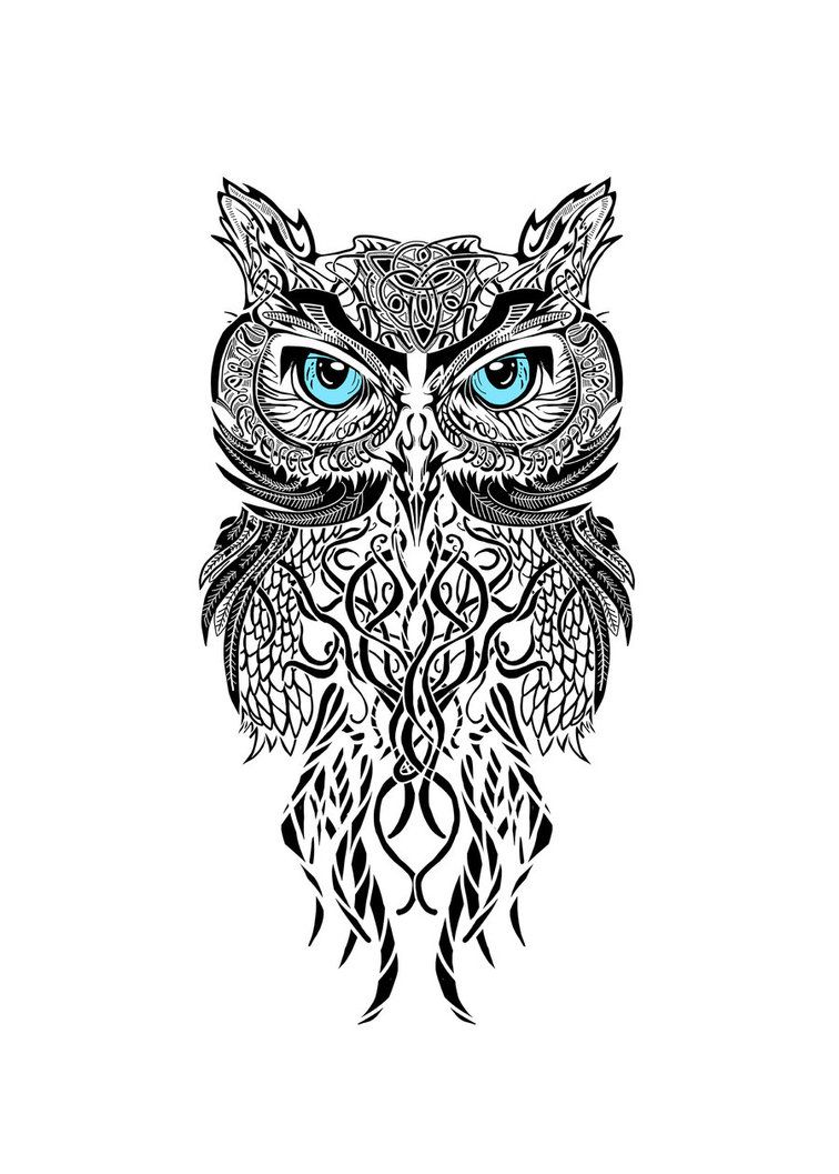 Black And White Owl This Would Be Awesome As A Tattoo Between The