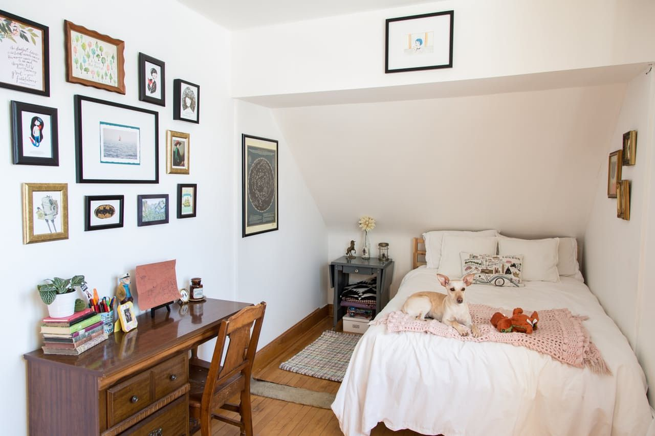 House Tour: A Comfy Home Shared By Best Friends