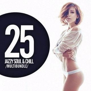 VA 25 Jazzy Soul and Chill Multibundle [2016] - CineFire.Tk