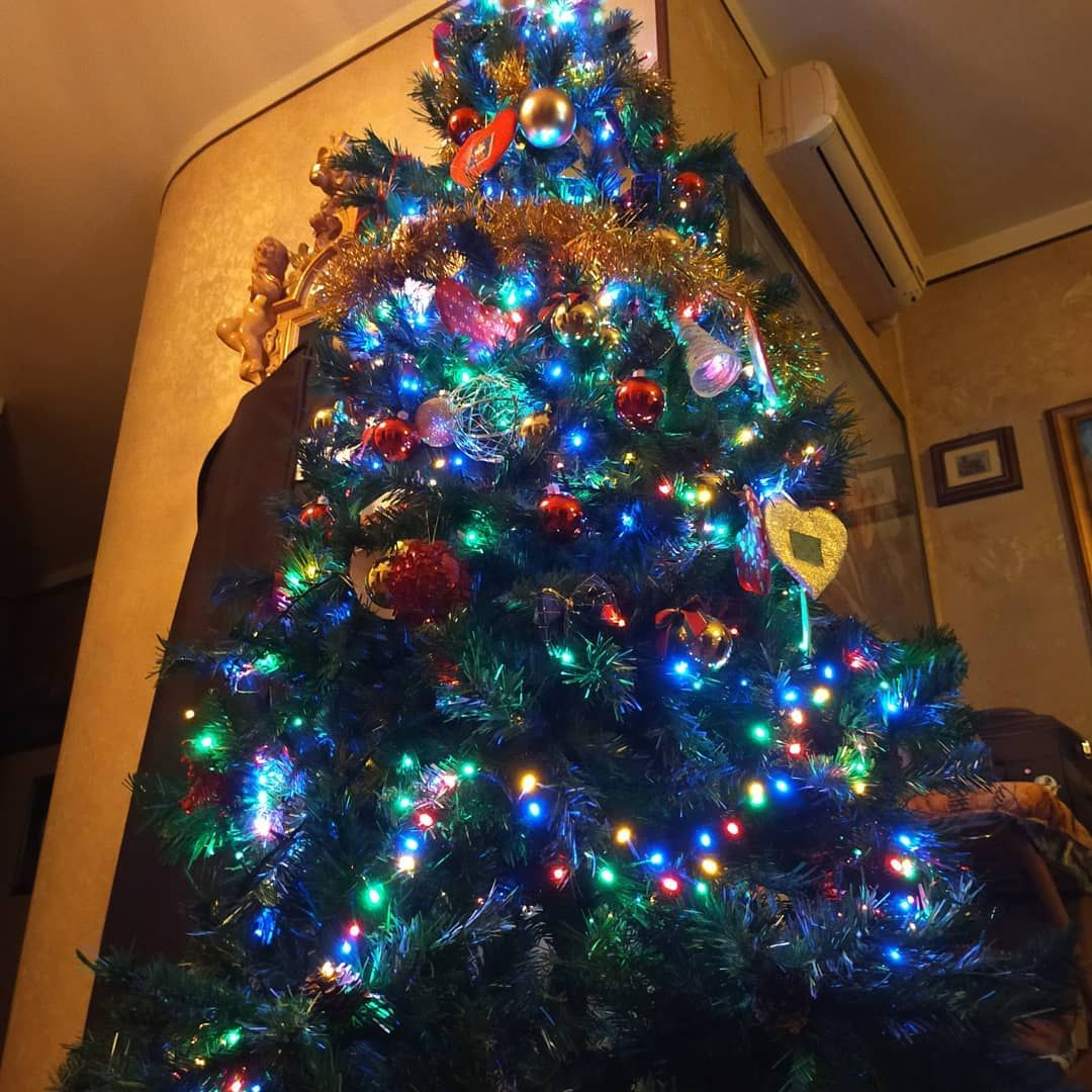 Christmas tree   #christmas #tree #holiday #xmasiscoming #making #lights #happy ... #belrop #christmas #happy #heart #holiday #home #instagood