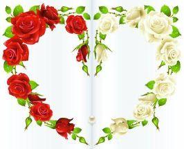 Marco De Rosas Blancas Buscar Con Google Imagenes Coloridas Flores Pintadas Detalles De Amor