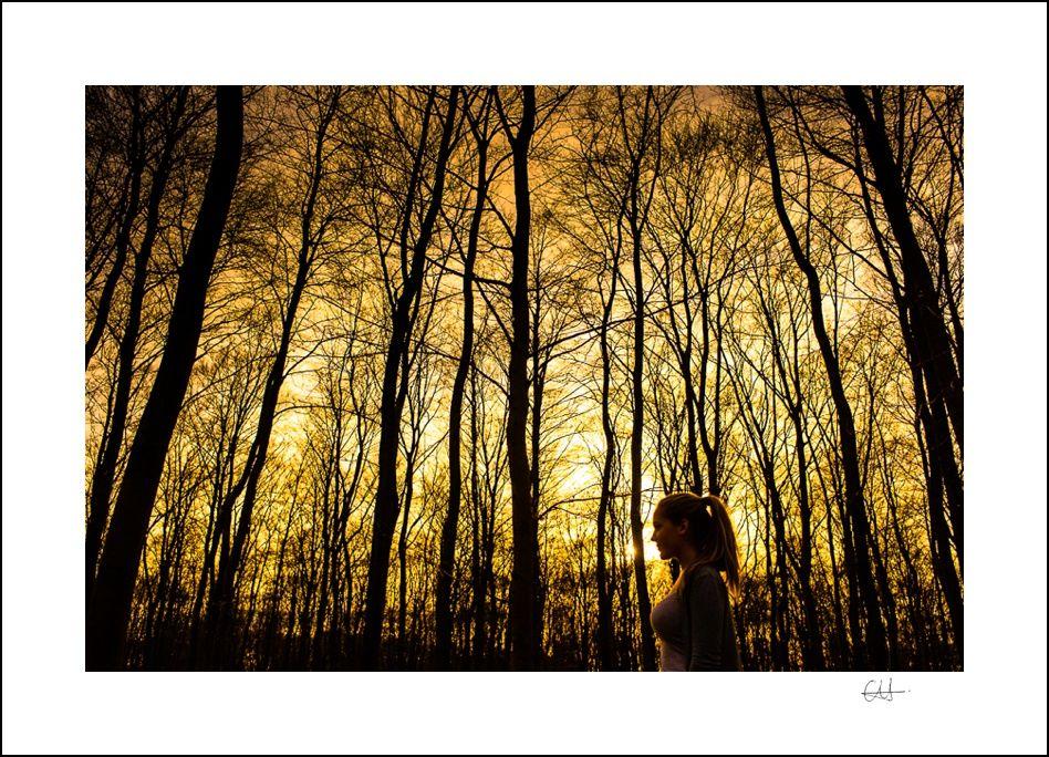 Siluettenbild, Portrait im Wald