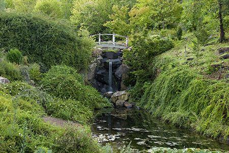 quarryhill botanical garden in glen ellen ca - Quarryhill Botanical Garden