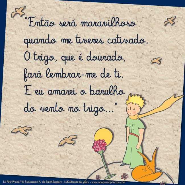 O Pequeno Príncipe Okay The Little Prince Frases E Prince