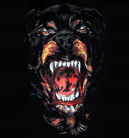 Givenchys Rottweiler Shirt Givenchy Dog Givenchy