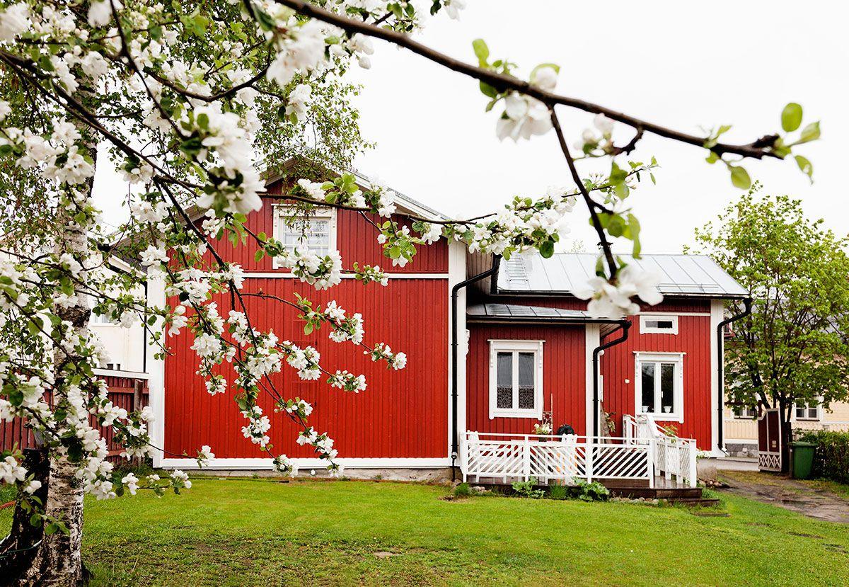 Omenapuiden ympäröimällä pihalla vietetään paljon aikaa kesäkuukausina. Omenoista valmistetaan sosetta ja piirakoita.