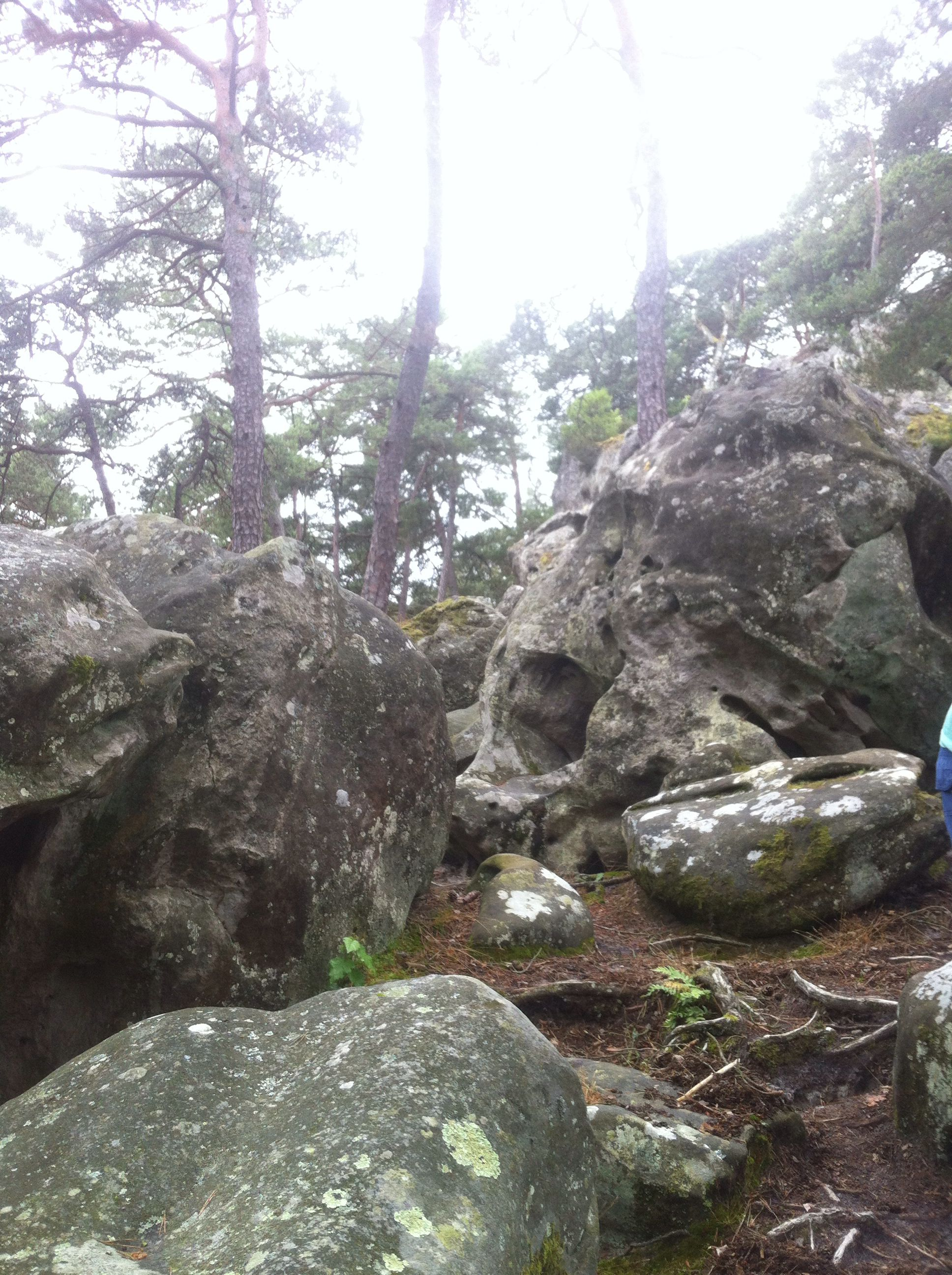 Fontainebleau the very spot Gordon proposed :)