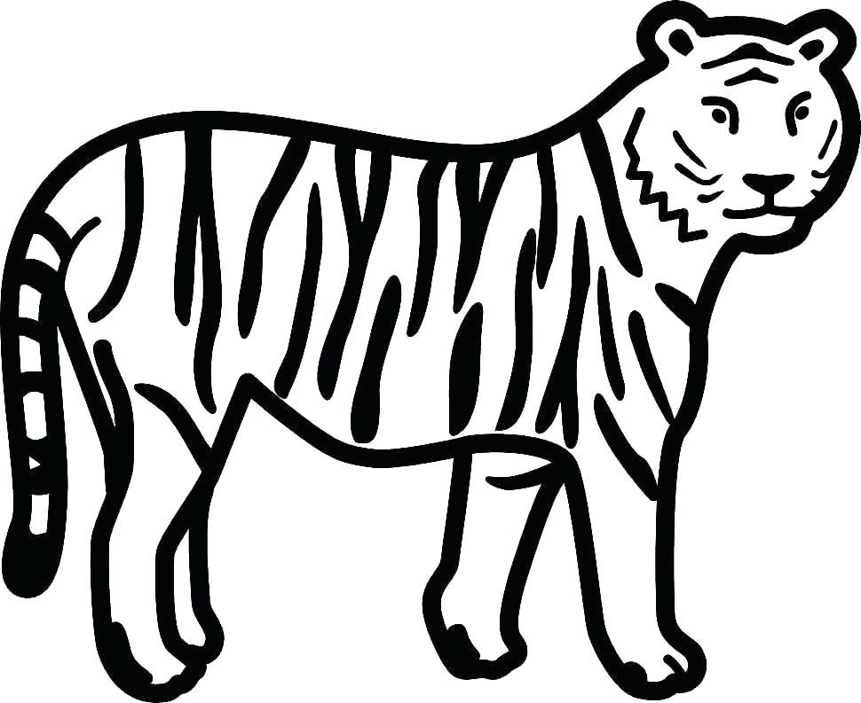 Tiger Coloring Pages Ideas With Awesome Pattern Free Coloring Sheets Tiger Images Cartoon Tiger Animal Drawings