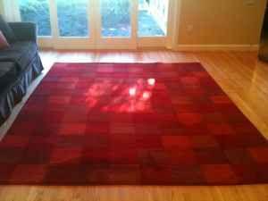 red potterybarn rug $400