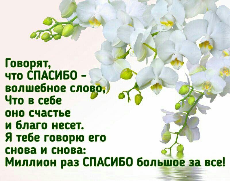 Pin Ot Polzovatelya Viktoriya Na Doske Spasibo Hristianskie